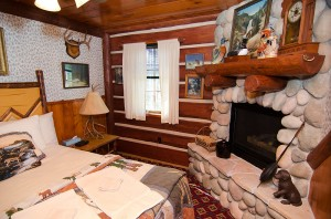 cabin10v