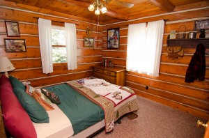 cabin1t