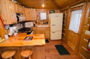 cabin30g