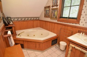 Bath_w__Jacuzzi_Tub