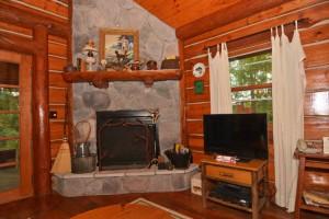 fireplace_&_flat_panel_TV