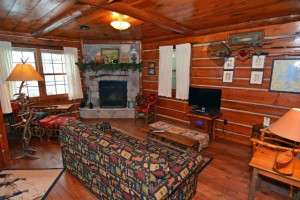 living_room_w__fireplace